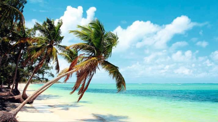 caribbeanmexicodominicanrepublicdominicanrepublicdes_c00049